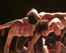 Convocatoria Programa de Entrenamiento Danza 2016