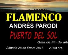 28 de enero: Gala flamenca de academia Andrés Parodi