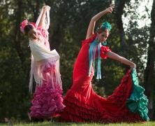 Clase abierta de flamenco en el Día de la Danza