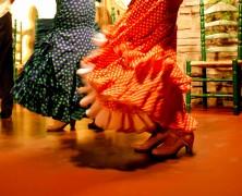 Participación del flamenco en proyecto de ley de artes escénicas